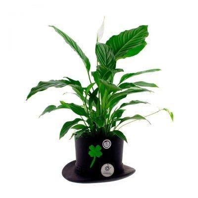 comprar-centro-de-mesa-sombrero-de-copa-decorado-negro-01