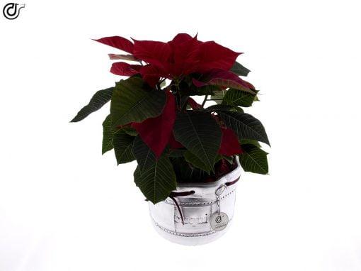 comprar-centro-de-mesa-navidad-decorado-plata-lazo-incluido-02