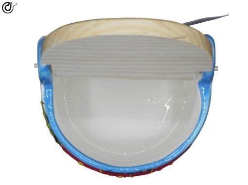comprar-salero-cocina-con-tapadera-de-cocina-modelo-05-02
