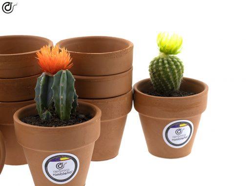 comprar-macetas-para-cactus-macetas-de-barro-modelo-d86-02