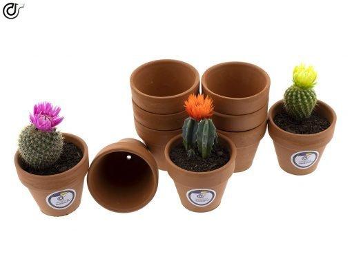 comprar-macetas-para-cactus-macetas-de-barro-modelo-d86-03