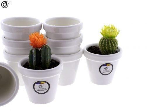 comprar-macetas-para-cactus-macetas-decoradas-modelo-d81-02
