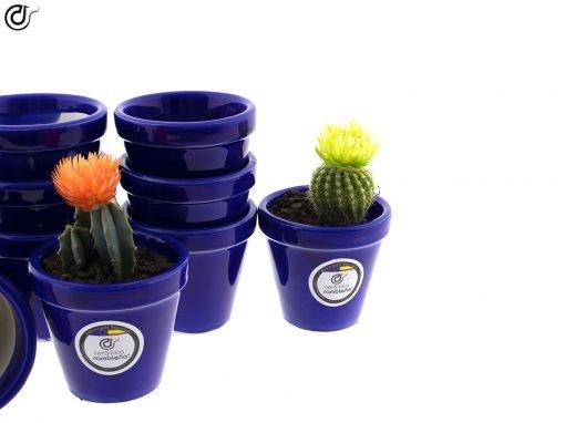 comprar-macetas-para-cactus-macetas-decoradas-modelo-d82-02