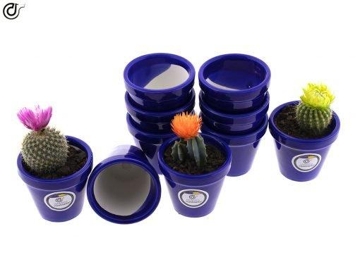 comprar-macetas-para-cactus-macetas-decoradas-modelo-d82-03